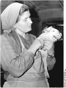 Bäuerin mit Kopftuch